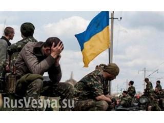 Решится ли Украина на блицкриг на Донбассе?