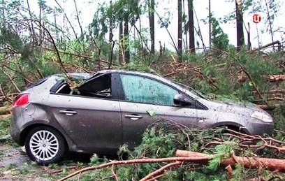 В центральных регионах России устраняют последствия урагана