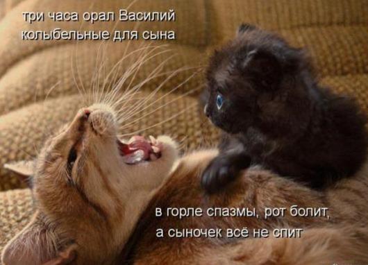 c89621108118b300a3e59835e51_prev