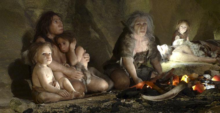Ученые рассказали о причинах превосходства Homo Sapience