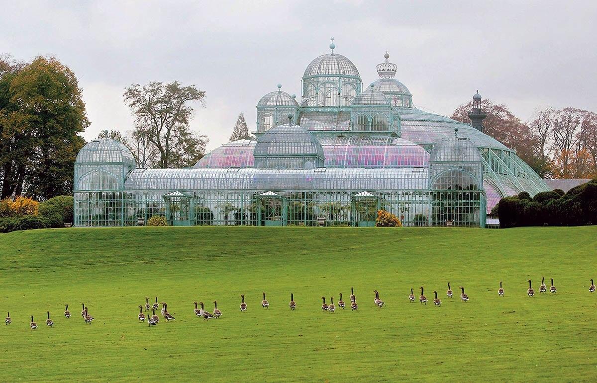 Королевские оранжереи Брюсселя