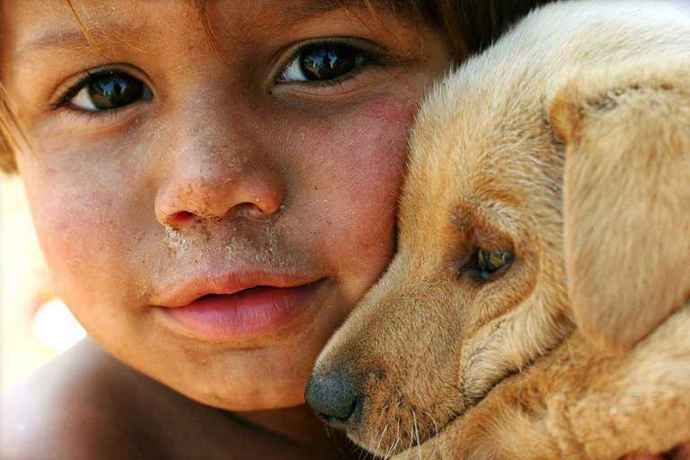 Как много в нашем мире доброты!
