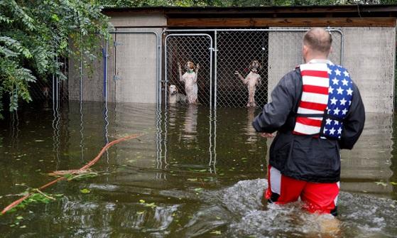Число жертв урагана «Флоренс» вСША выросло до43 человек