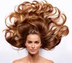 Красота ваших волос