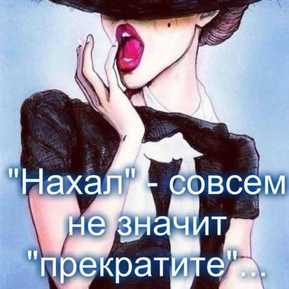 Жена с мужем ругается:  — Я кручусь как дура в колесе!…
