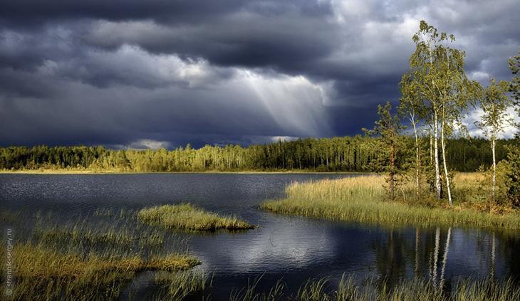 Фото Сергея Странника - июнь 1