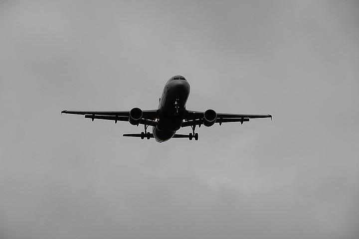 Из-за сильного тумана 14 самолетов не смогли приземлиться во Внуково
