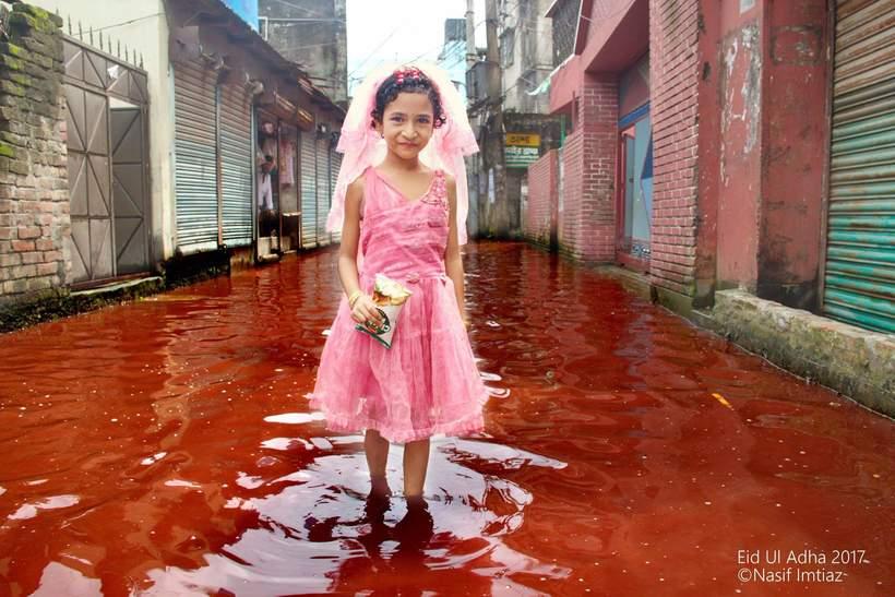 Реки крови в праздник жертвоприношений в столице Бангладеш