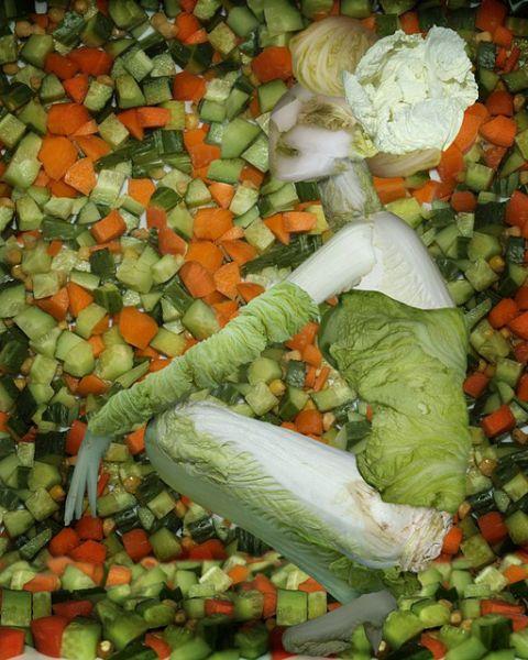Китайское овощное искусство
