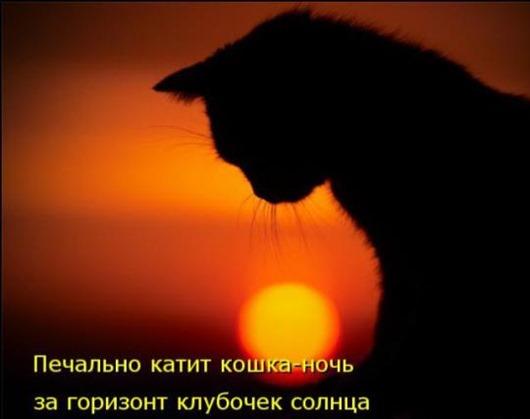 4a200081644c267ba71ca148d75_prev