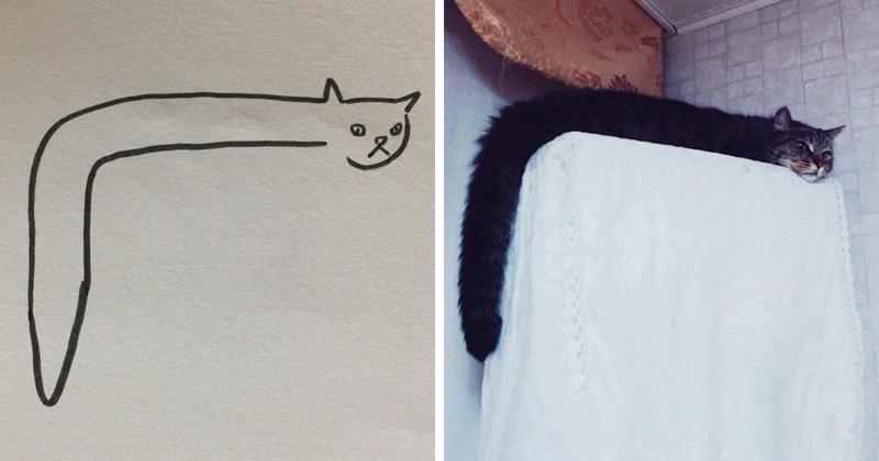 Кто сказал, что вы не умеете рисовать котиков?