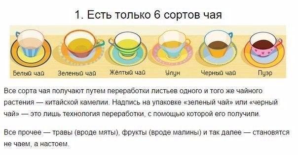 На заметку! Как заваривать и пить чай