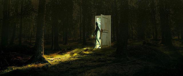 """Возможно ли приоткрыть """"дверь"""" в иной мир читая книгу о паранормальных явлениях?"""