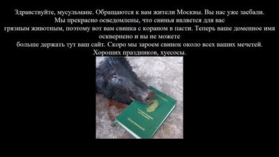 Хакеры  «подложили свинью» с…