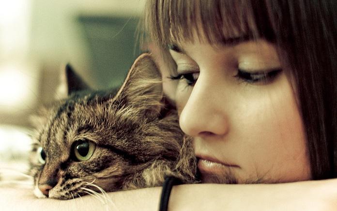 Что делать, если ваша кошка вас не любит (или вам кажется, что не любит)