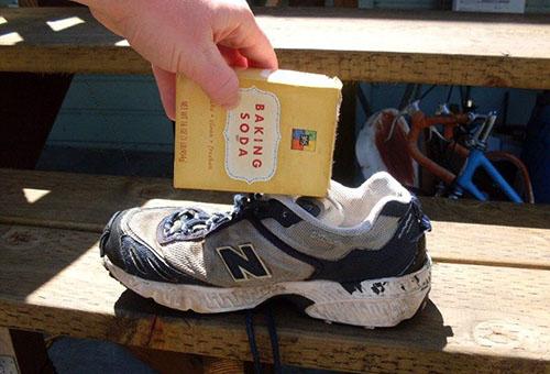 Как избавиться от запаха кошачьей мочи, если питомец «пометил» обувь?