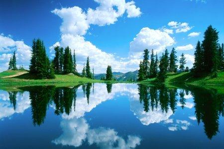 отражение в воде природа 20 (450x300, 144Kb)
