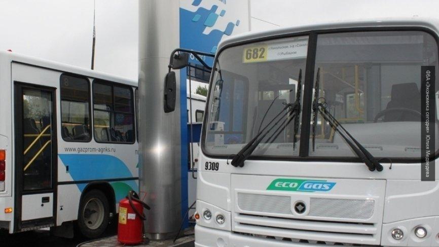 В Воронеже водитель автобуса…