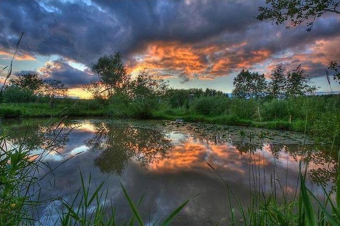 отражение в воде природа 14 (700x465, 315Kb)
