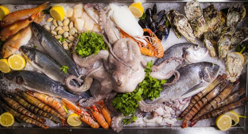 От сардин до иглобрюха: 20 интересных фактов о рыбе