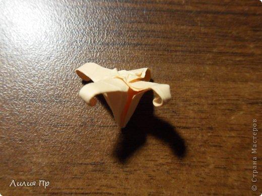 Вечноцветущий гиацинт. Оригами.
