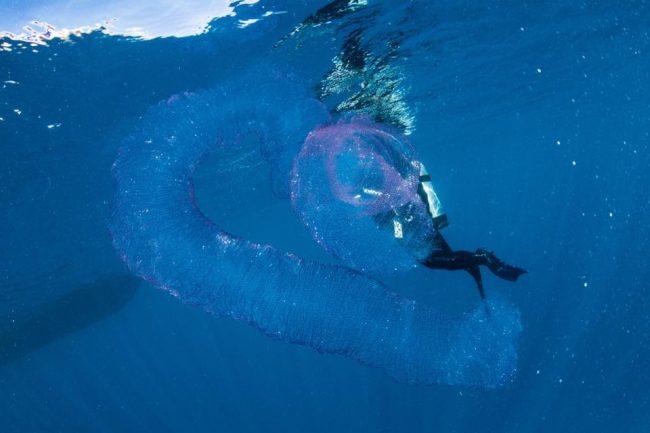 Водолазы-любители на дне океана столкнулись с таинственным светящимся существом… Только взгляните на это!