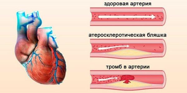 vrachmedik.ru