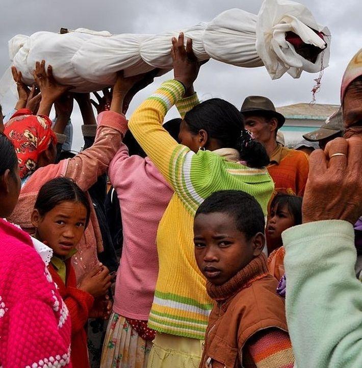 14 фактов в пользу того, что Мадагаскар — это отдельная вселенная