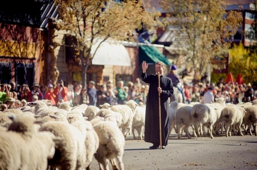 terraoko 2015012702 10 Праздник Трейлинг овец в Айдахо.