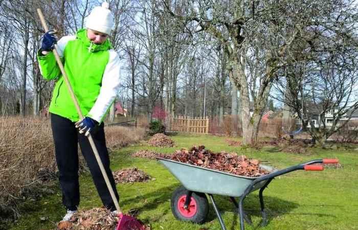 Садовые работы весной, котор…
