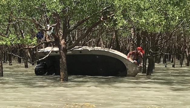 Рыбаки провели двое суток на дереве, спасаясь от крокодила