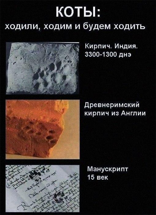 Кое-что всё-таки вечно под луной!))