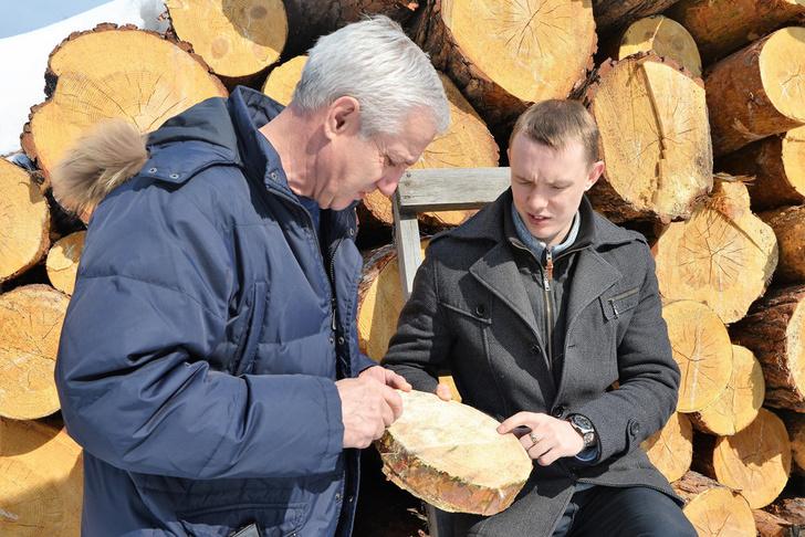 Ноу-хау сибирского ученого позволит вывести рынок лесозаготовок из тени