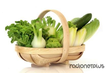 Польза зеленых овощей и трав
