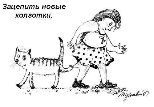 Правила кошачьего этикета cat, People Are Awesome