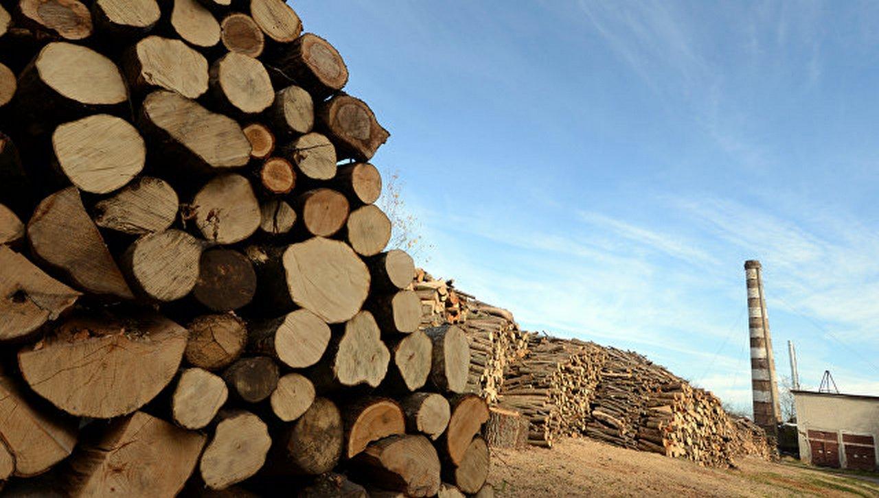 Всё на экспорт: Киев распродает остатки природных богатств