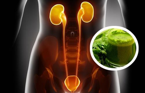 2 сока-диуретика, которые помогут очистить почки