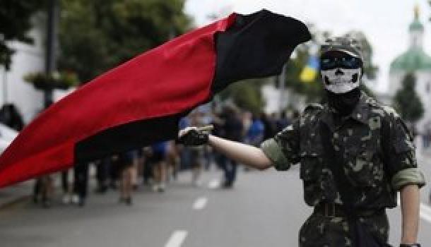 СМИ: Австрийские дезертиры присоединились к«Правому сектору» вДонбассе