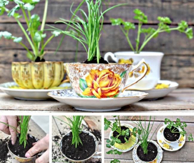20 потрясающих садов, которые могут уместиться на ладони