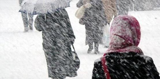 Волна арктического холода может убить 40 000 человек в Великобритании