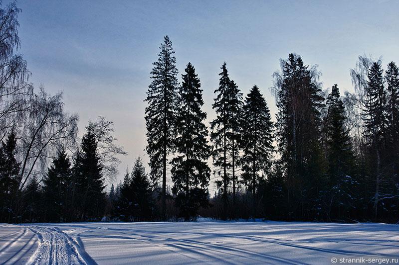 Отправиться полетать по снежным просторам