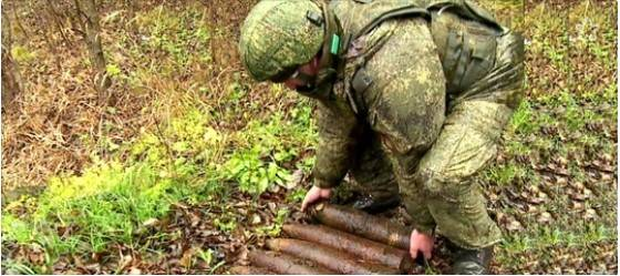 В Ленинградской области поисковики обнаружили минное поле