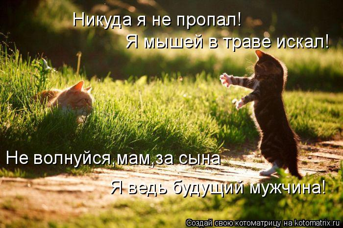 Котоматрица: Никуда я не пропал! Я мышей в траве искал! Не волнуйся,мам,за сына Я ведь будущий мужчина!