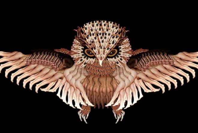 Коллекция птиц и насекомых из обнаженных человеческих тел от художницы