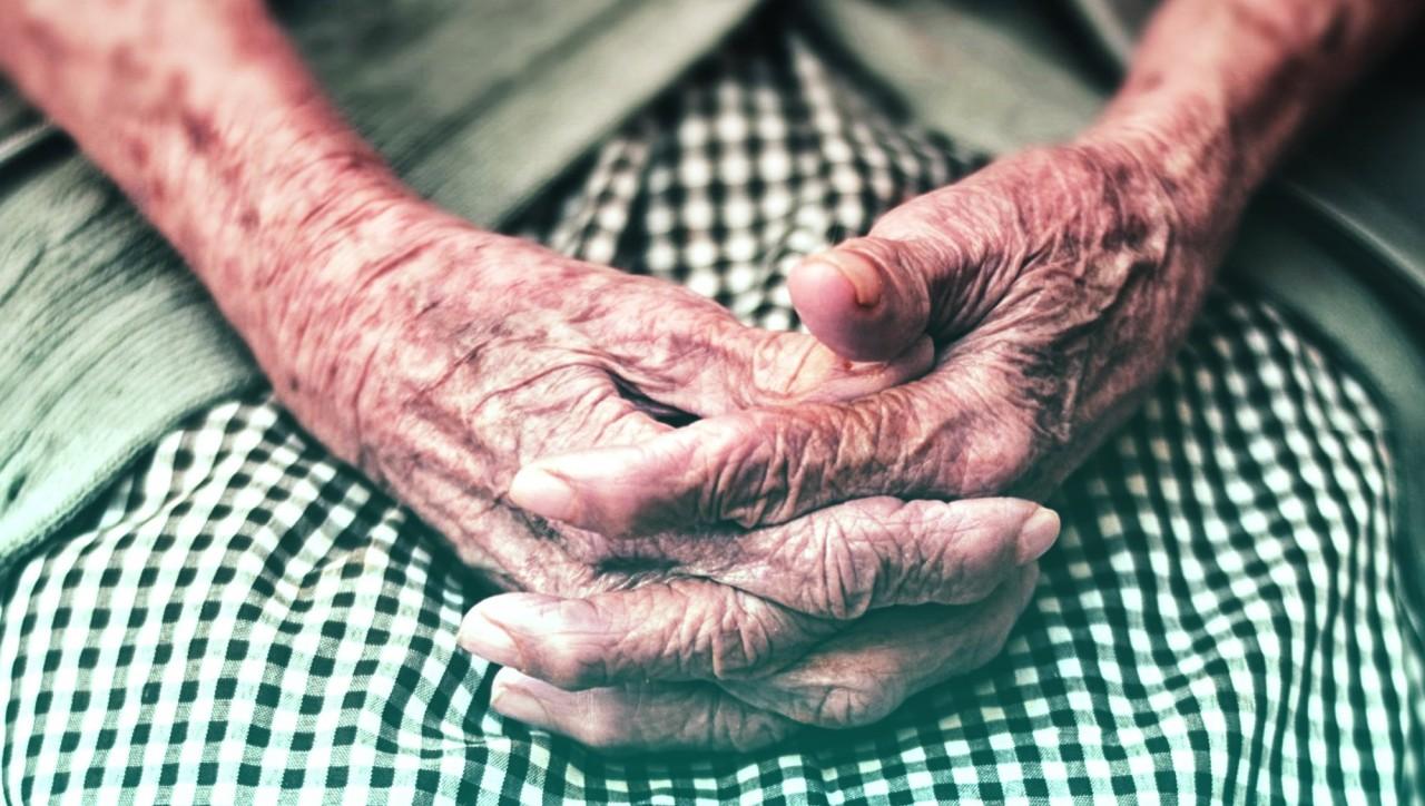«Грамотное политическое решение»: в Госдуме оценили новые поправки по пенсиям