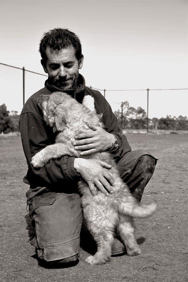 милые собаки обнимают своих хозяев (8)