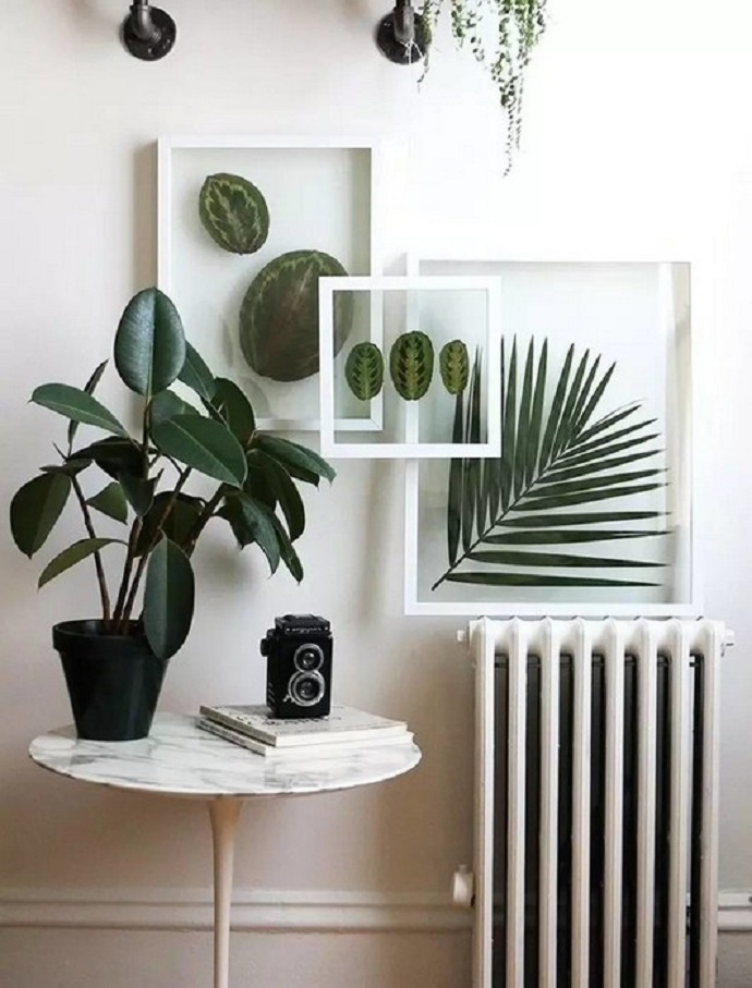 Зеленые картины