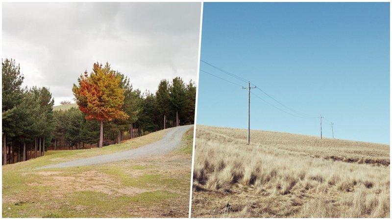Красочные и уютные фотографии австралийской природы (26 фото)