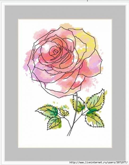 """Любительницам цветов — схемы для вышивки крестом """"Роза"""""""