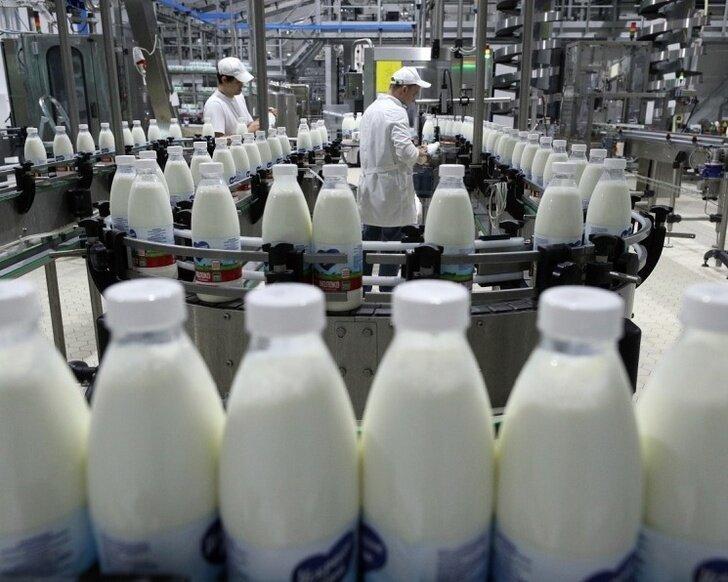 Экспорт российского молока за год вырос почти в два раза Хорошие, добрые, новости, россия, фоторепортаж